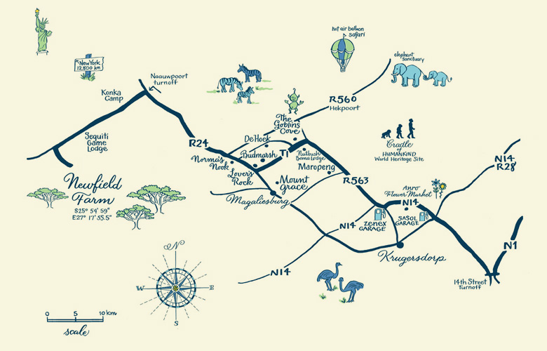 Map for a wedding in South Africa. I never drew ostriches on a map before. I love the navy printing on this one.